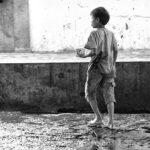 10-Melepas Getir Hidup di Jagal Sapi