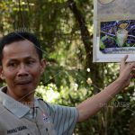 Selain panorama alam, di sekitar elaga ini juga bisa ditemi tumbuhan Kantong Semar. Di Indonesia ada 11 spesies kantung semar, 5 diantaranya dapat dijumpai di sekitar telaga ini dan 1 di antaranya endemik, hanya ada di Telaga Tambing, namanya Nepentes Pit