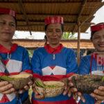 Sejumlah warga suku Pamona menunjukkan salah satu menu makanan tradisionalnya pada Festival Musintuwu (Kebersamaan) di Tentena, Poso, Sulawesi Tengah, Kamis (31/10/2019).